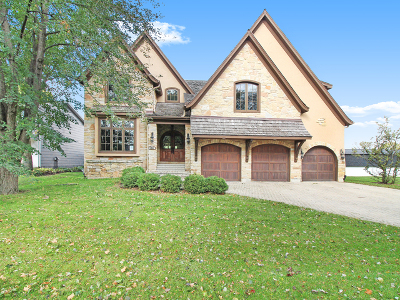 Naperville Single Family Home New: 1041 Royal St George Drive