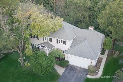 Naperville Single Family Home New: 1000 Honest Pleasure Drive