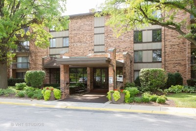 Willowbrook Condo/Townhouse New: 301 Lake Hinsdale Drive #304