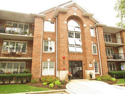 Westmont Condo/Townhouse For Sale: 5645 South Cass Avenue #204