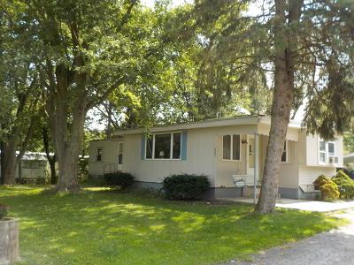 Braidwood Single Family Home New: 627 West 3rd Street