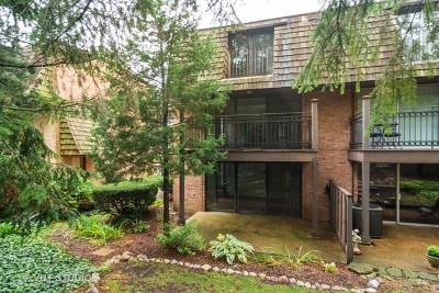 Barrington Condo/Townhouse New: 446 Lageschulte Street #1-446
