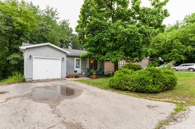 Fox Lake Single Family Home New: 36 Woodland Avenue