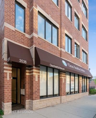 Condo/Townhouse New: 3536 North Ashland Avenue #4N