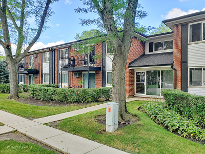 Cook County Condo/Townhouse New: 2408 East Brandenberry Court #2F