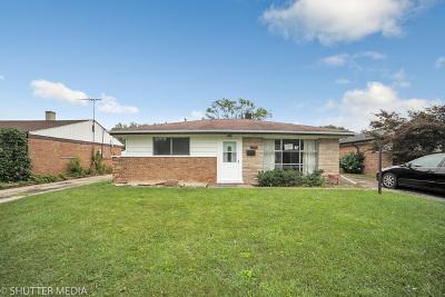 Cook County Single Family Home New: 17133 Burnham Avenue
