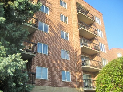Cook County Condo/Townhouse New: 1470 Jefferson Street #208