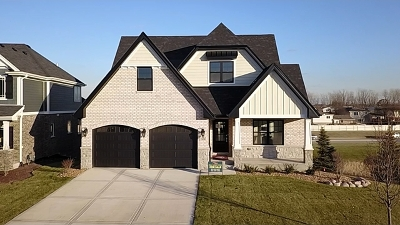 Orland Park Single Family Home New: 16343 Emerson Drive