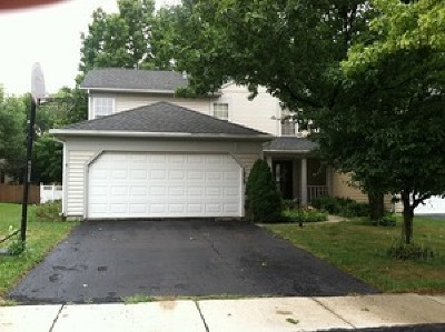 Naperville Rental New: 1939 Appaloosa Drive