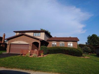 Orland Park Single Family Home New: 13741 Woodridge Lane