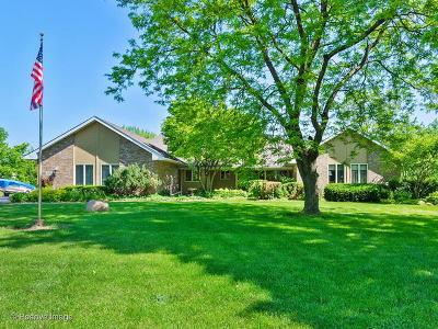 Homer Glen Single Family Home New: 15110 Wood Duck Lane