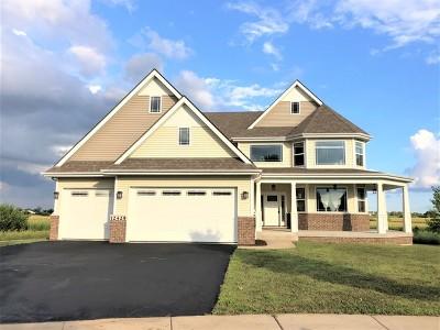 Plainfield Single Family Home New: 12425 Kilkenny Drive