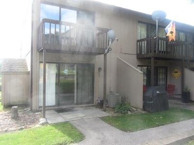 Fox Lake Condo/Townhouse New: 57 Vail Colony #9
