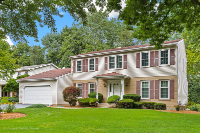 Naperville Single Family Home New: 1219 Whitingham Circle