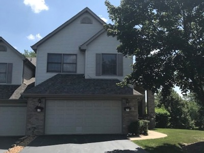 Orland Park Condo/Townhouse New: 8737 Golden Rose Drive