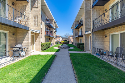 Cook County Condo/Townhouse New: 6811 North Olmsted Avenue #206