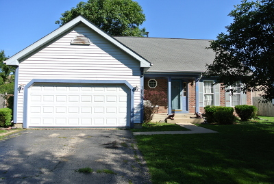 Elgin Single Family Home New: 1030 Huron Drive