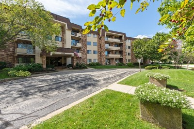 Cook County Condo/Townhouse New: 3350 North Carriageway Drive #314