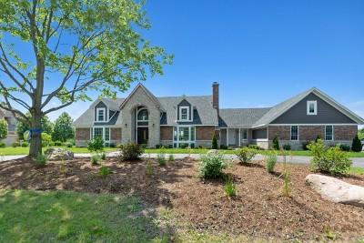 Orland Park Single Family Home New: 61 Silo Ridge Drive East