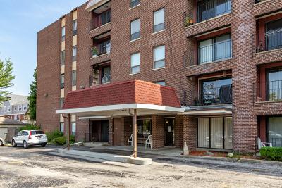 Morton Grove Condo/Townhouse New: 6330 Lincoln Avenue #4L
