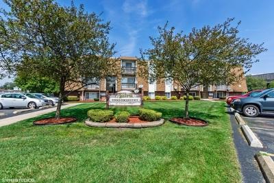 Chicago Ridge Condo/Townhouse New: 10640 Brooks Lane #B3