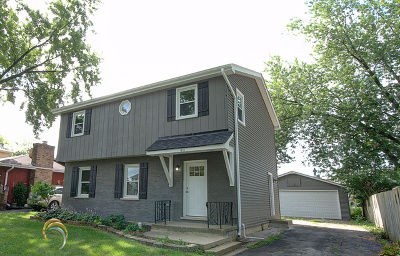Du Page County Single Family Home New: 1610 East Elm Street