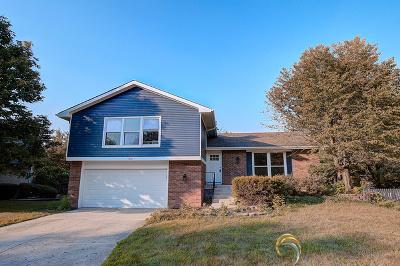 Naperville IL Single Family Home New: $469,900