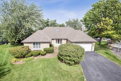 Lemont IL Single Family Home New: $459,000