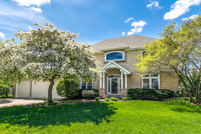 Naperville Single Family Home New: 1431 Frenchmans Bend Drive