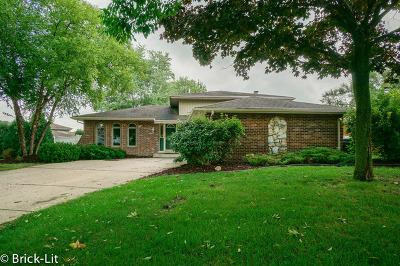 Mokena Single Family Home New: 19657 Glennell Avenue