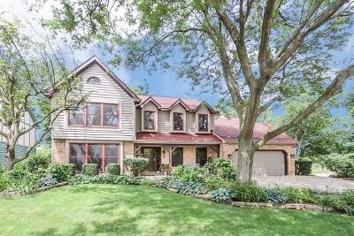 Naperville IL Single Family Home New: $469,800