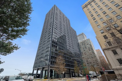 Chicago Condo/Townhouse New: 910 North Lake Shore Drive East #2317