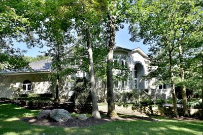 Burr Ridge Single Family Home New: 9520 Falling Waters Drive East