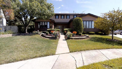 Palos Park IL Single Family Home New: $429,900