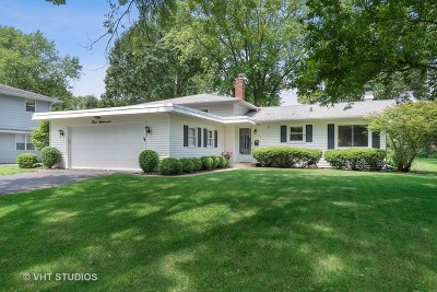 Naperville Single Family Home New: 317 West Gartner Road
