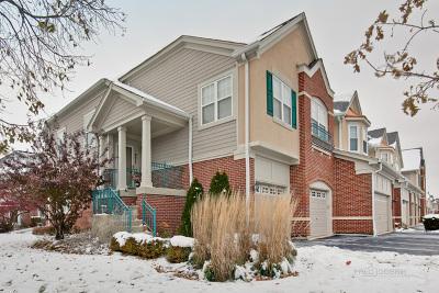 Vernon Hills Condo/Townhouse New: 471 Pine Lake Circle