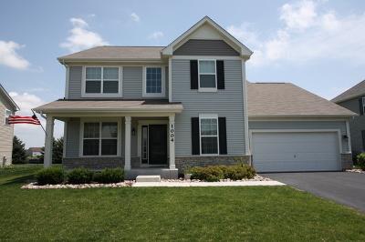 Joliet Single Family Home New: 1004 Hudson Drive