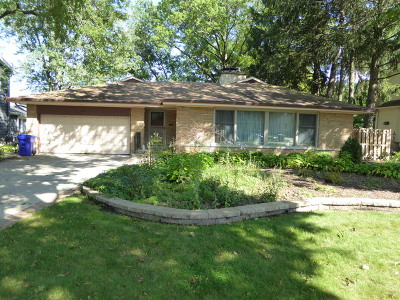Du Page County Single Family Home New: 211 East Road