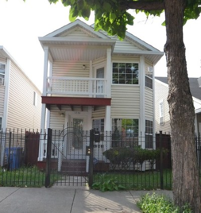 Chicago Single Family Home New: 1734 South Desplaines Street