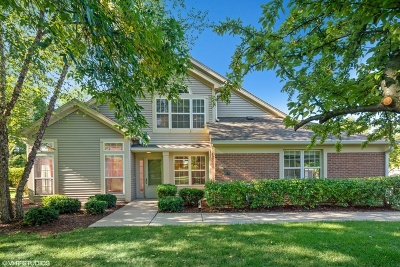 Du Page County Condo/Townhouse New: 1647 Colfax Court #1