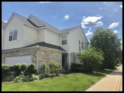 Du Page County Condo/Townhouse New: 220 Bay Drive