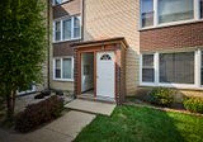 Chicago Condo/Townhouse New: 7244 North Hamilton Avenue #1E