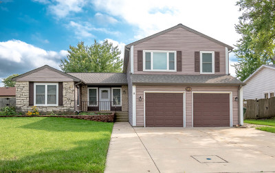 Du Page County Single Family Home New: 149 Hesterman Drive