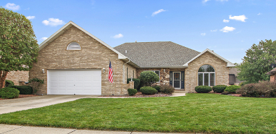 Palos Park IL Single Family Home New: $495,000