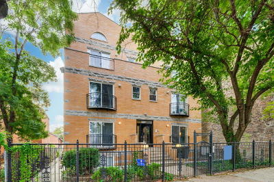 Cook County Condo/Townhouse New: 1506 North Campbell Avenue #1N