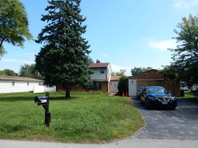 Du Page County Single Family Home New: 4n327 7th Avenue