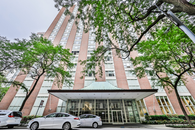 Cook County Condo/Townhouse New: 1325 North State Parkway #4E