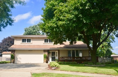 Du Page County Single Family Home New: 1856 West Mulloy Drive