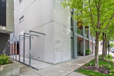Condo/Townhouse New: 1615 North Wolcott Avenue #301