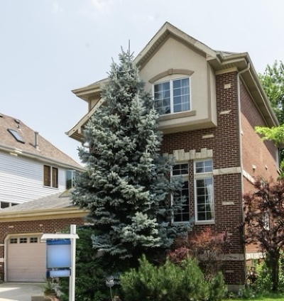 Cook County Single Family Home New: 5527 North Kildare Avenue